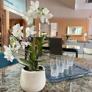 Orchidea vaso ceramica effetto cemento giochidispazio